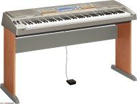 Casio WK-8000