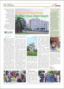 Tabloid HaloJepang! Edisi Februari 2015